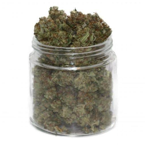 buy gorilla cannabis strain online