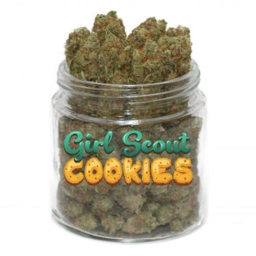 buy gsc cannabis strain