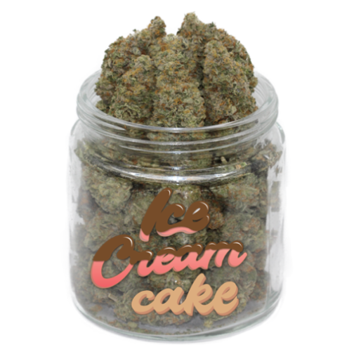 buy ice cream strain online