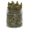 buy scout master strain online
