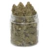 buy orange juice strain online