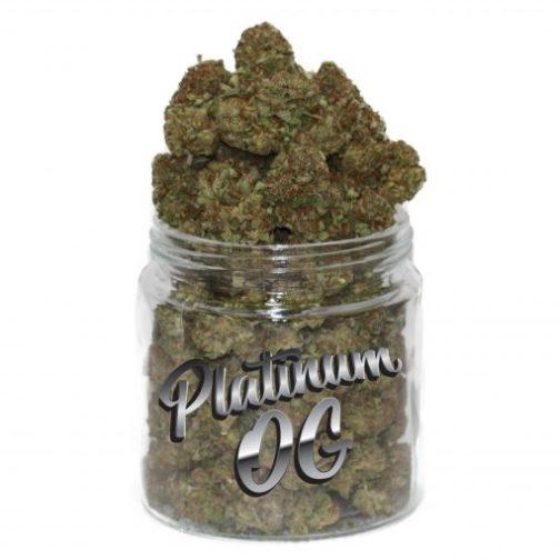 buy platinum og strain online