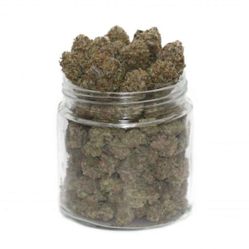 buy purple urkle strain online
