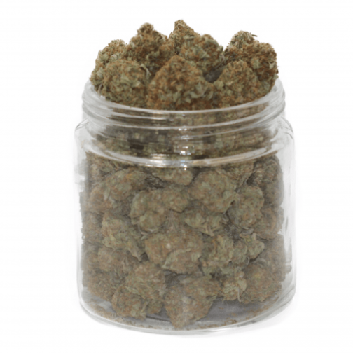 buy snow white weed strain online