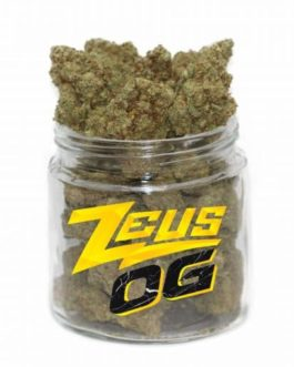 Zeus OG